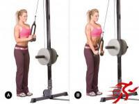 10项对女士最重要的训练动作