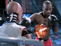 拳击的速度动作的研究分析视频