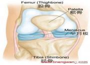 <strong>俯卧撑——打造铠甲般的胸肌与钢铁般的肱三</strong>