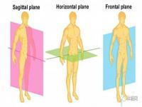 运动员最喜欢做的六个核心抗旋转动作