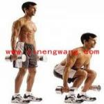 利用哑铃锻炼大腿肌群的方法
